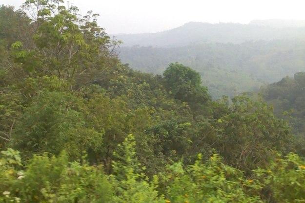Panorama sepanjang perjalanan
