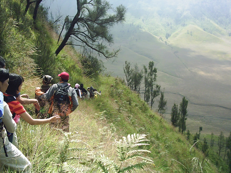 Menuruni bukit