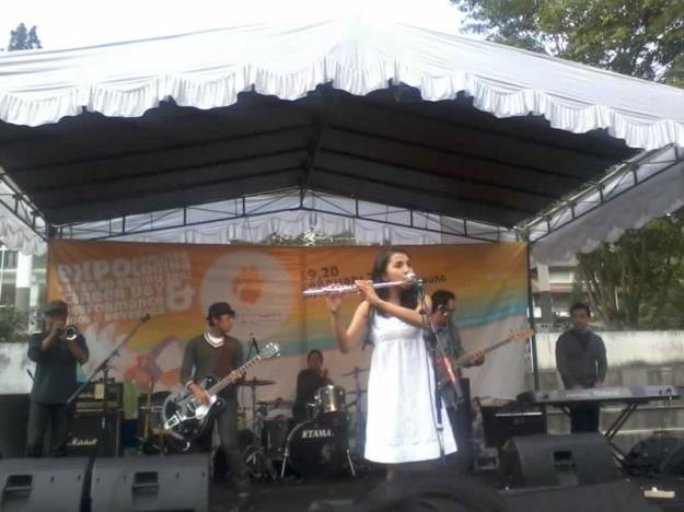 Performance Band Mocca