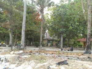 Balai pembibitan pohon