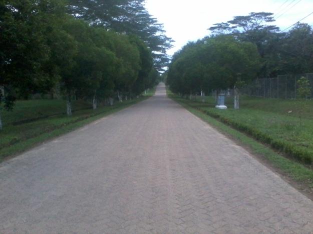 Jalan yang sepi