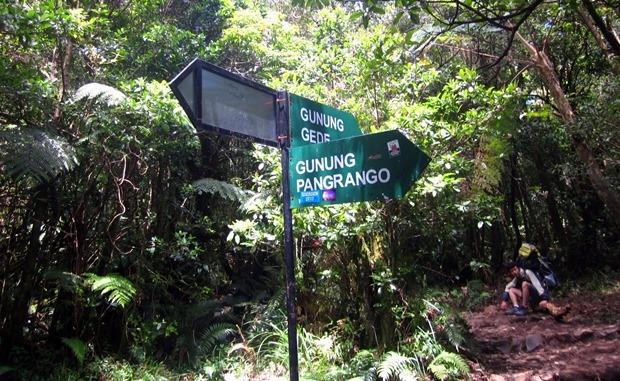 Persimpangan Gunung Gede-Pangrango