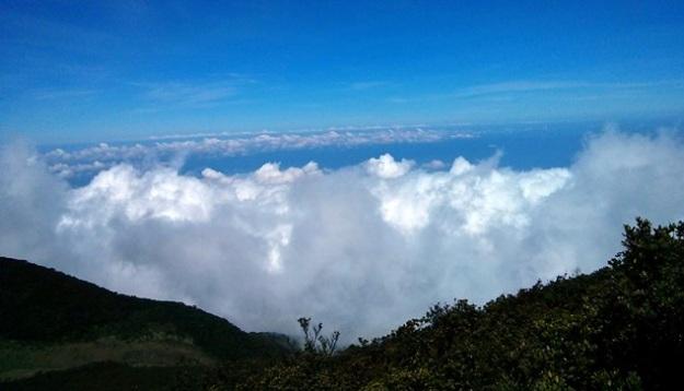 Samudra awan