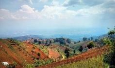 Pemandangan dari Waroeng Daweung