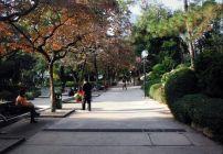 Jalan di taman