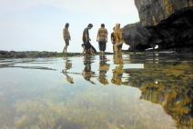 Karang dan biota laut lainnya di balik air