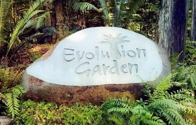 Evolution Garden
