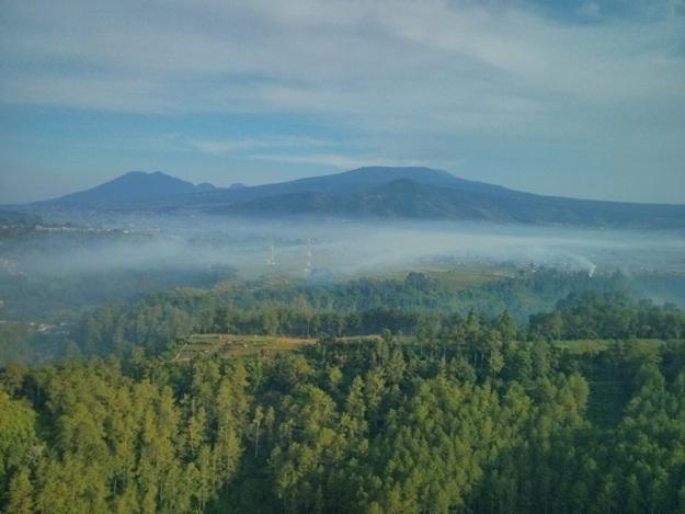 View Pegunungan dan hutan yang diselimuti kabut