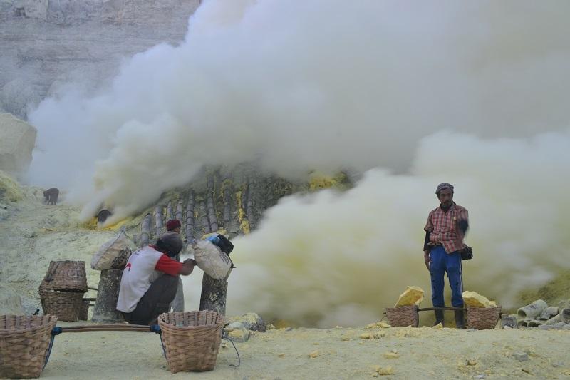Trip ke Kawah Ijen & TN Baluran (Bag. 1): Berburu Api Biru (5/6)