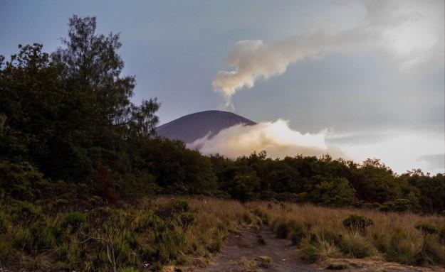 Puncak Mahameru terlihat dari Jambangan