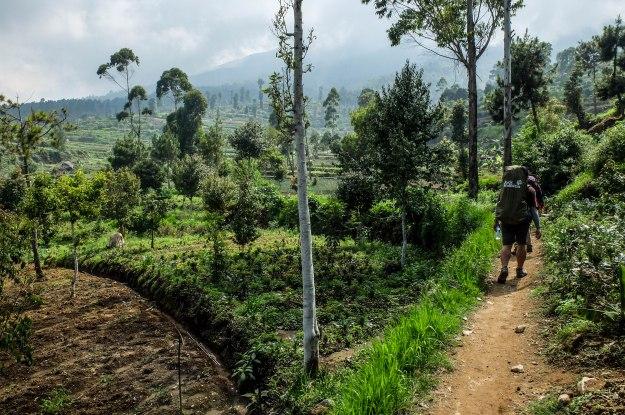 Naik dari Gunung Putri (photo by Ferdian)