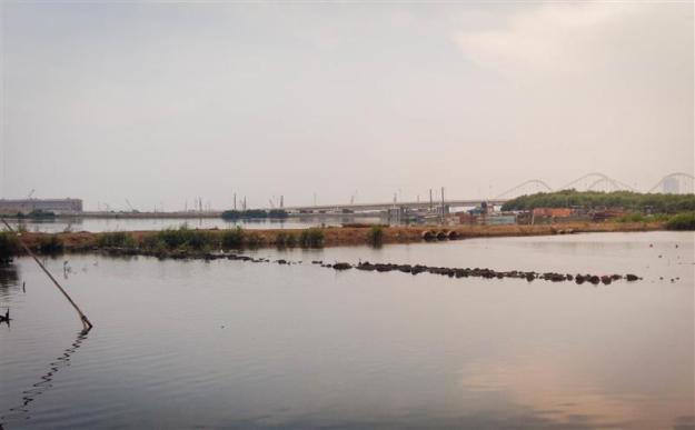 Proyek reklamasi di seberang pantai Angke Kapuk