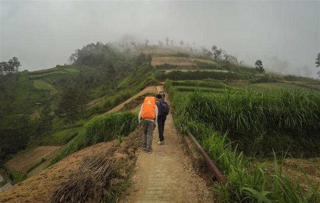 Berjalan melewati ladang-ladang