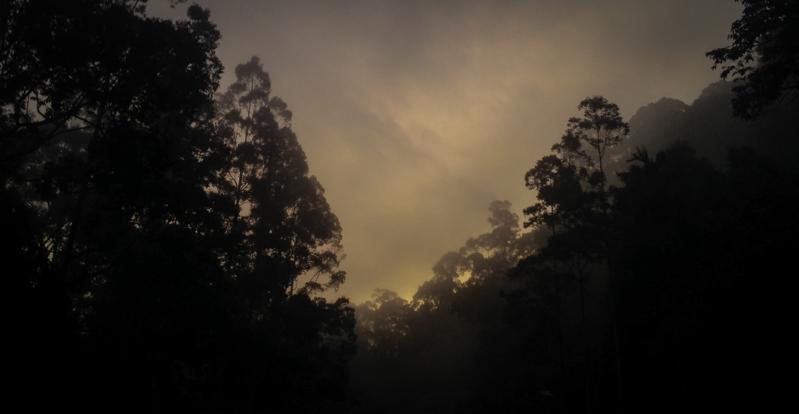 kabut di gunung angsi