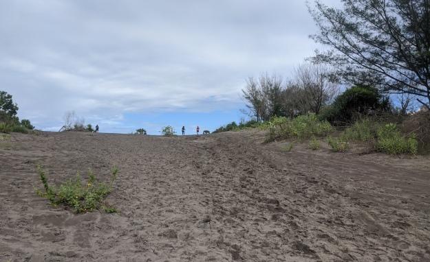 Melintasi gumuk pasir